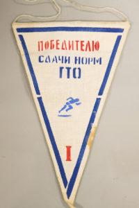 Вымпел Победителю сдачи норм ГТО. 1 место.